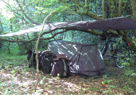 Camp set up with DD tarp and hammock on the ground